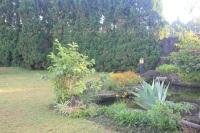 Villa Garden New (11)