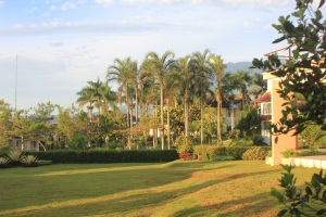 Villa Garden New (18)